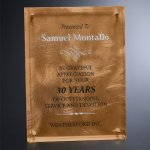 Bronze Alloy Plaque Amber Optical Crystal Awards