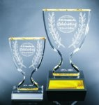 Trophy Cup Colored Acrylic Awards