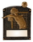 Legends of Fame Award -Volleyball Female  Misc. Resin Trophy Awards