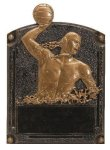 Legends of Fame Award -Water Polo Male  Misc. Resin Trophy Awards