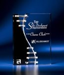 Wave Crevice Acrylic Award with Black Accent Modern Design Awards
