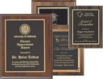 Economy/Budget  Plaques - Copy Plaque Awards - Economy