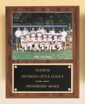 Plaque with Slide-in Photo or Certificate Holder Soccer Award Trophies